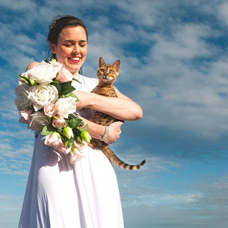 cats and weddings, animals in wedding, kitty in wedding pics