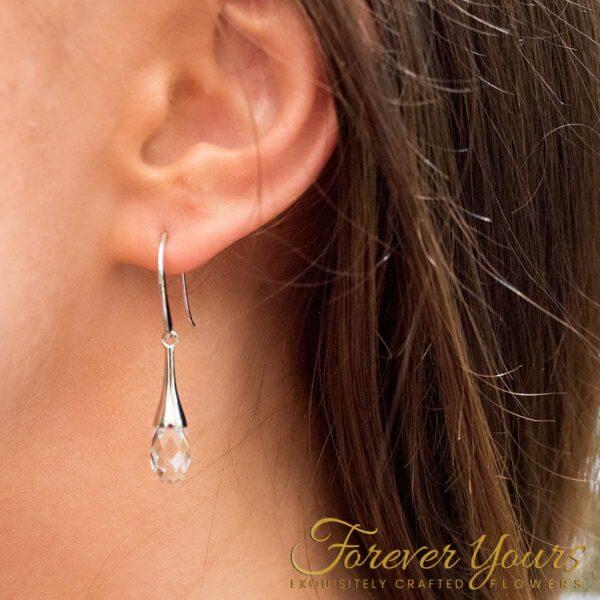 Teardrop Crystal Pendant Earrings